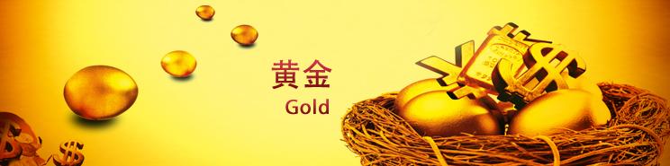 黃金學(xue)堂(tang)2